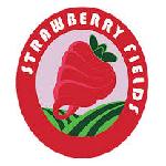 Strawberry Fields Frozen Yogurt